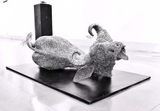 Vaca santa, símbolo tradicional de la cultura india Fotos de archivo