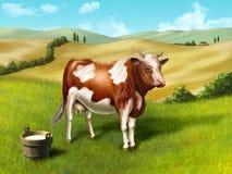 Vaca y leche Foto de archivo libre de regalías