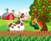Vaca y pollo felices de la historieta en la granja Imagen de archivo libre de regalías