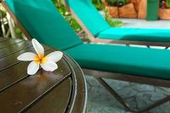 Vacaciones de verano Fotografía de archivo libre de regalías