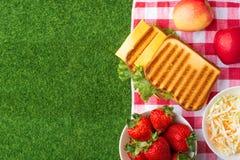 Vacaciones de verano, comida campestre en el parque en la hierba Pa?o, senviches, frutas, comida sana y accesorios, visi?n superi imagen de archivo