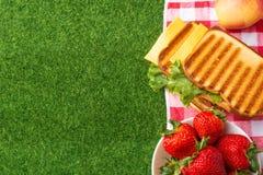 Vacaciones de verano, comida campestre en el parque en la hierba Pa?o, senviches, frutas, comida sana y accesorios, visi?n superi foto de archivo