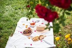 Vacaciones de verano en el jardín debajo de las rosas rojas fotos de archivo