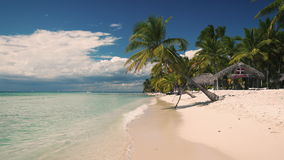 Vacaciones de verano en la isla tropical Saona, República Dominicana Palmeras y playa arenosa hermosa almacen de video