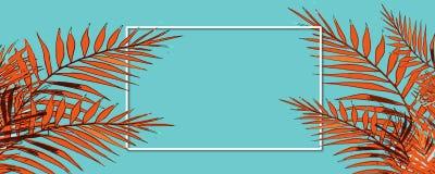 Vacaciones de verano felices Capítulo el fondo tropical con las palmeras fotos de archivo