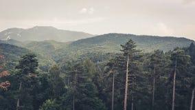 Vacaciones Rumania de la montaña Fotografía de archivo