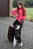 Vacances avec le chien Photos libres de droits