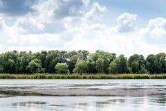 Vacances d'été sur la berge Chasse pour les canards sauvages Nuages blancs au-dessus du lac de forêt Image stock