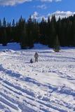 Vacances de l'hiver de la famille Image stock