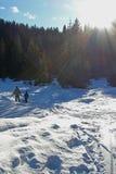 Vacances de l'hiver de la famille Photo libre de droits
