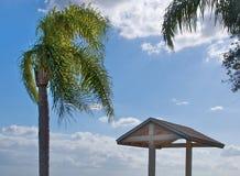Vacances de palmier Images libres de droits