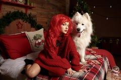 Vacances et Noël de chien d'hiver Une fille dans un chandail tricoté et avec les cheveux rouges avec un animal familier dans le s Images stock