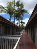Vacances tropicales images libres de droits