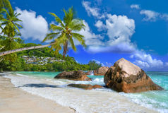 Vacances tropicales Photos stock
