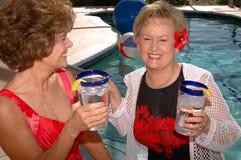 Vacances tropicales d'amis aînés Images libres de droits