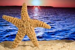 Vacances tropicales de paradis Photo stock
