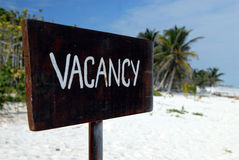 Vacant beach. A wooden brown board with the word vacancy on it, a paradise beach with palm trees in the background Stock Images