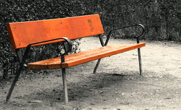 Vacant bench. A vacant bench on a rainy day in park Royalty Free Stock Photos