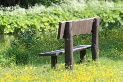 Vacant Bench. An empty wooden bench looking out over a river surrounded by wildflowers in a peaceful location Stock Photo