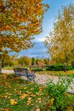 Vacant Bench in Park royalty free stock photography