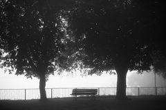 Vacant bench under the trees Stock Photos