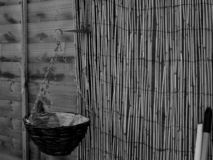 A Vacant Empty Hanging Basket royalty free stock images