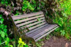 Vacant Garden Bench royalty free stock photography