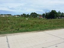 Vacant Lot. This is a seemingly vacant lot on a side road in the Philippines Royalty Free Stock Images