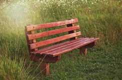 Vacant wooden bench in country field Stock Image