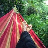 Vacanza che si rilassa in un'amaca Fotografia Stock