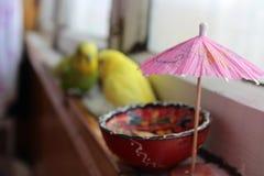 Vacanza dell'ombrello Immagine Stock Libera da Diritti