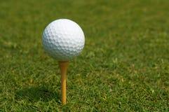Vacanza di golf Fotografie Stock Libere da Diritti