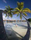 Vacanza di lusso - Polinesia francese - South Pacific Fotografie Stock