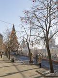 Vacanza di Natale a Mosca Immagine Stock