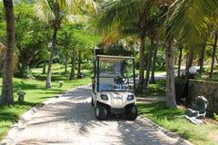 Vacanza estiva e concetto di vacanza per turismo Paesaggio tropicale ispiratore fotografia stock libera da diritti