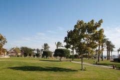 Vacanza invernale nell'Egitto, Taba. Fotografia Stock Libera da Diritti