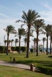 Vacanza invernale nell'Egitto, Taba. Immagini Stock