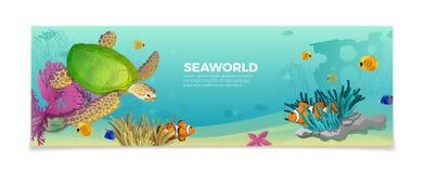 Vacanza subacquea a di viaggio di LIFE-Nature del mondo del mare Immagine Stock