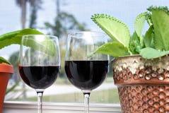 Vacanza tropicale del vino Immagini Stock Libere da Diritti