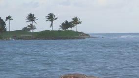 Vacanza tropicale delle onde di mar dei Caraibi archivi video