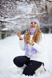 Vacanze di inverno Immagini Stock