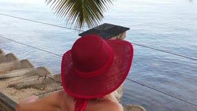 Vacanze estive delle Seychelles archivi video