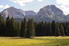 Vacanze estive nelle montagne immagine stock