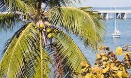 Vacanze in Florida Fotografia Stock Libera da Diritti