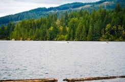 Vacanze meravigliose con il jet ski sul mounta pittoresco dell'acqua fotografia stock libera da diritti
