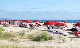Vacanzieri che godono alla spiaggia Fotografia Stock