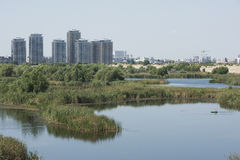 Vacaresti-Naturpark Lizenzfreie Stockfotografie