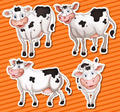 Vacas ilustración del vector