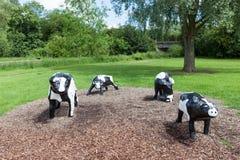 Vacas concretas infames em Milton Keynes Foto de Stock Royalty Free