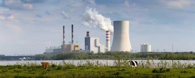 Vacas e central elétrica imagens de stock